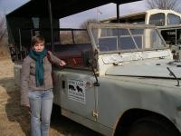 Екскурсія до Lion Park - прямо до левів та носорогів