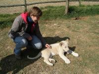 Екскурсія до Lion Park - з маленькими левинятами можна погратися
