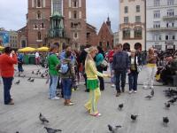 На головній площі міста Кракова - в оточенні безстрашних голубів