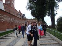 Excursion to Wawel castle